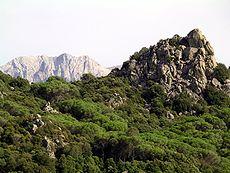 Monte Ortobene