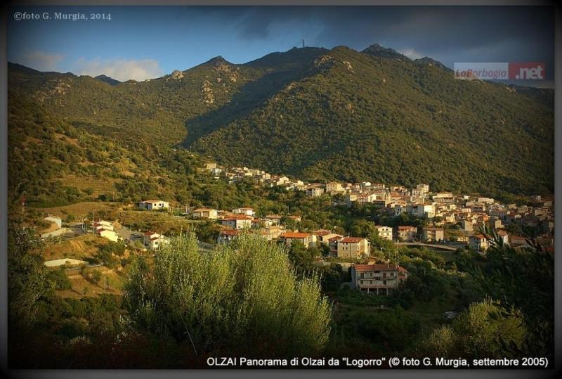 Panorama Olzai 2005 foto G Murgia