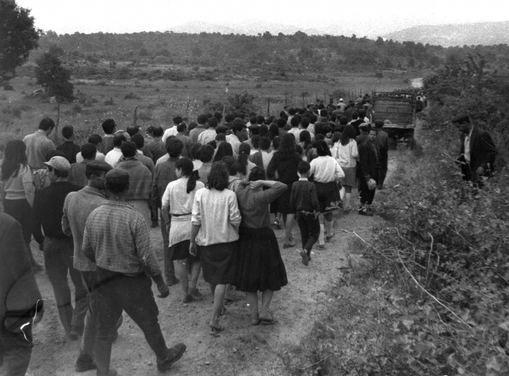 Immagine della marcia degli orgolesi verso Pratobello
